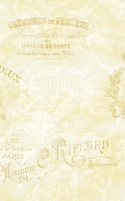 کاغذدیواری برای پذیرایی داماسک فولیو ساخت آمریکا با کد 30105
