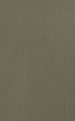 کاغذ دیواری ساده بافت دار با برند بی ان کاملا قابل شستشو از آلبوم گلامورس کد 46711